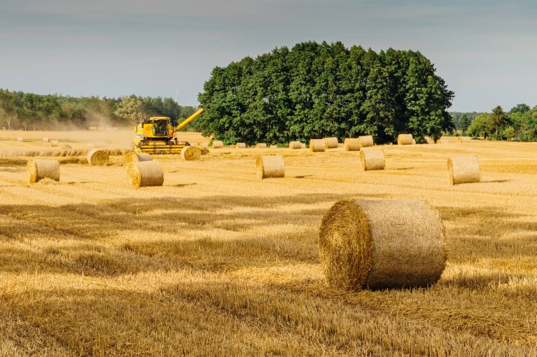 EBG Capital AG - Successful Investing in Agriculture